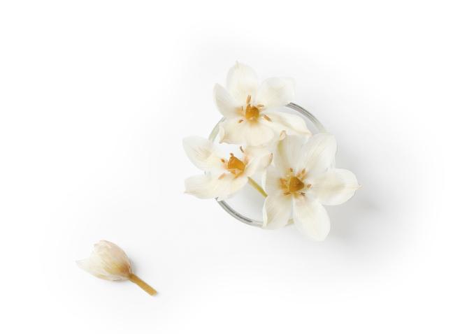 blüten inhaltsstoffe lux